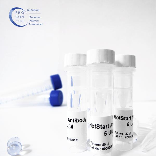HotStart Antibody