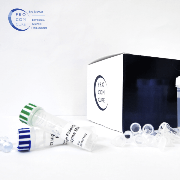 Vita High Fidelity PCR Kit